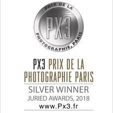 PX3-2018-Silver